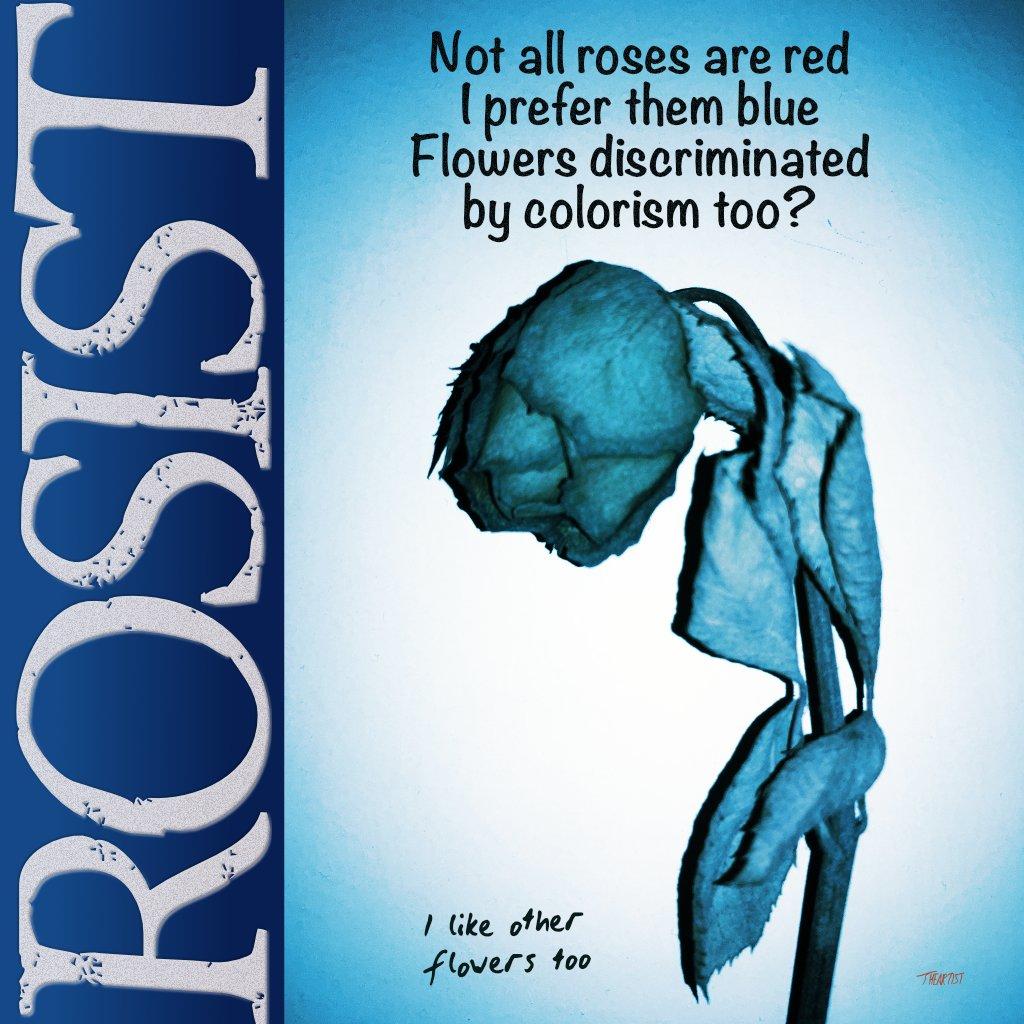 Rosist #2